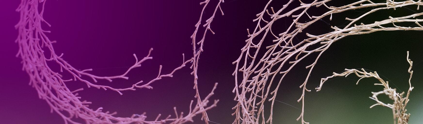 ayuda a la fibromialgia - Picología Methodos